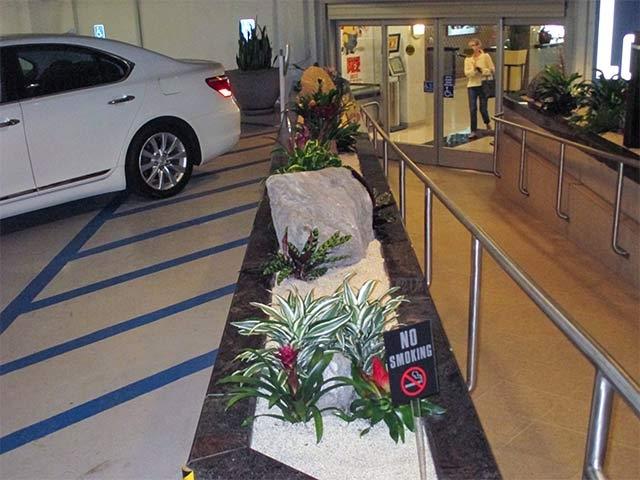 Interior Plant Design & Installation Los Angeles -16
