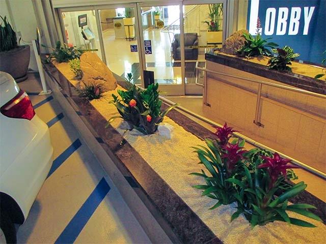 Interior Plant Installation - Los Angeles -17