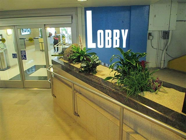 Commercial Interior Plant Installation Los Angeles -18