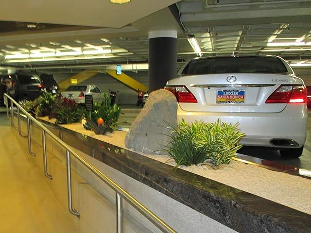Indoor Plant Installation - Los Angeles