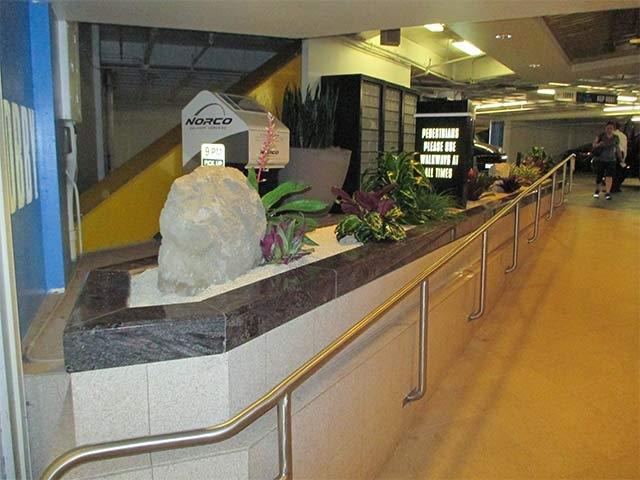 Interior Plant Installation -20