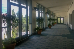indoor-landscaping-plant-services-los-angeles-2