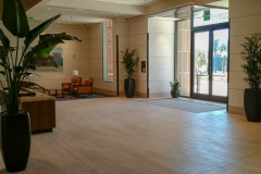 indoor-landscaping-plant-services-los-angeles-24