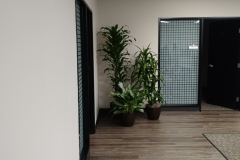 indoor-landscaping-plant-services-los-angeles-35