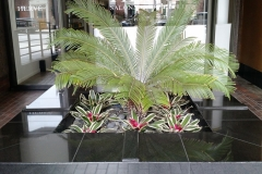 indoor-landscaping-plant-services-los-angeles-40