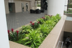 indoor-landscaping-plant-services-los-angeles-10