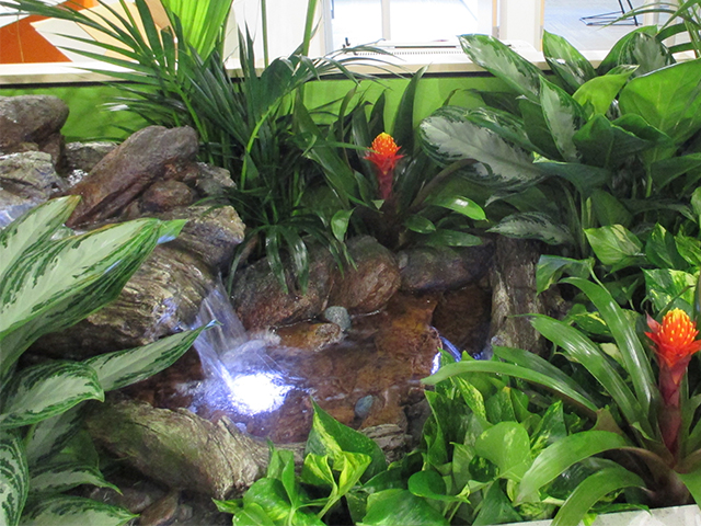 Waterfall & Tropical Stream in corporate office building