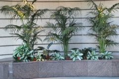 indoor-landscaping-plant-services-los-angeles-12