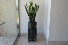 indoor-landscaping-plant-services-los-angeles-15