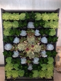 indoor-landscaping-plant-services-los-angeles-17