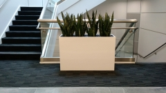 indoor-landscaping-plant-services-los-angeles-30