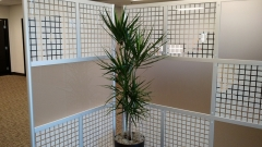indoor-landscaping-plant-services-los-angeles-34