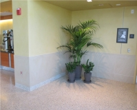 indoor-landscaping-plant-services-los-angeles-37
