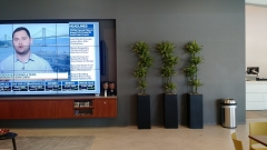 indoor-landscaping-plant-services-los-angeles-46