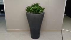 indoor-landscaping-plant-services-los-angeles-51